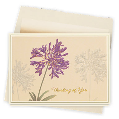 Thinking of You Blossoms Card
