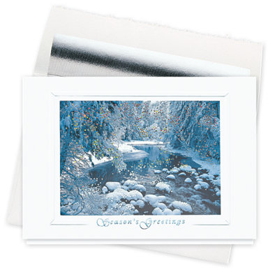 Winter Sparkle Holiday Card